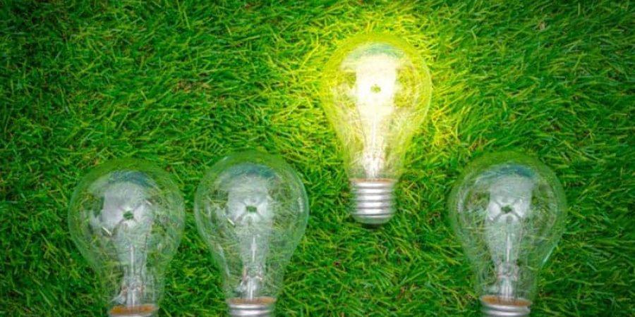 bulb-grass-green-energy