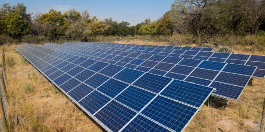 solar-panel-safari